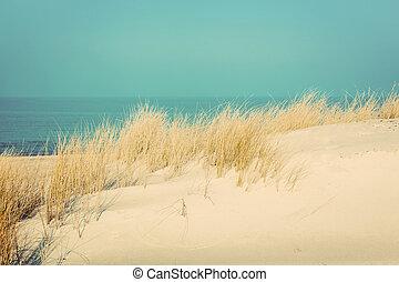 pacata, ensolarado, praia, com, dunas, e, grass., mar...