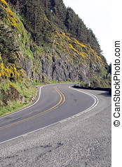 Pacific Coast Highway Curve - An S-curve on the Pacific...