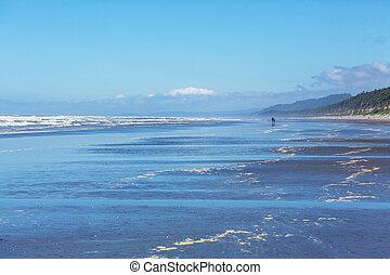 Pacific coast - Pacific Coast