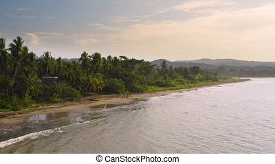 Pacific Coast With Rainforest - Beach of the Pacific Ocean ...