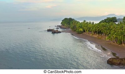 Pacific Coast With Rainforest - Sandy beach of the Pacific ...