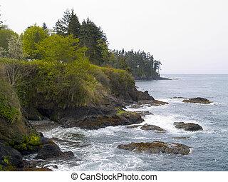 Pacific Northwest Beach - A beautiful rocky beach at Salt ...