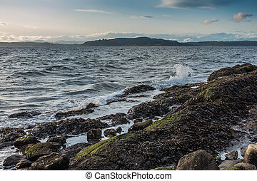 Pacific Northwest Coast Landscape - A view of the coast in...