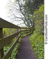 Pacific Northwest Trail - Trail at Salt Creek Recreation...