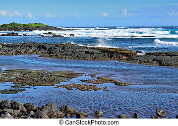 Whittington beach park in the Big Island of Hawaii