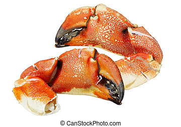 Rock Crab Claws - Pacific Rock Crab Claws isolated on white ...