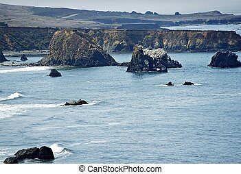 Pacific Shore California
