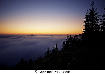 Pacific Sunset. Cloud Layer Above Redwood Forest HIlls....
