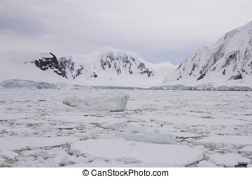 Pack ice with icebergs along Antarctic coastline