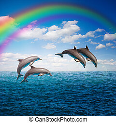 pack of jumping dolphins - pack of of jumping...