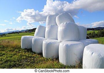 Packed hay bales