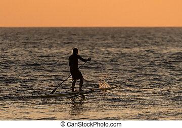 paddleboarding, 人