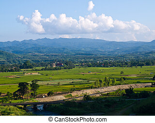 Paddy field and moutain view nearby Mae Suay reservoir, ...