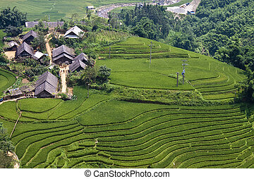 Paddy fields and small villages on a hills in northern Vietnam