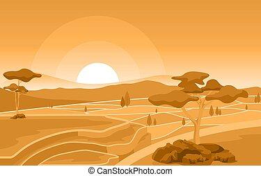 paddy, levers de soleil, doré, agriculture, asiatique, riz, plantation, illustration, champ