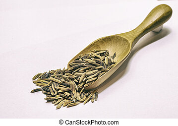 Paddy on a wooden ladle White background