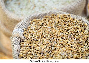 paddy rice in sac bag