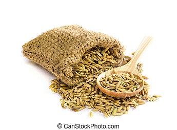 paddy rice seed.