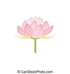 Padma Lotus Sacred Indian Flower