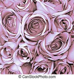 padrão, cor-de-rosa levantou-se, pálido
