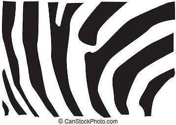 padrão, pele, zebra