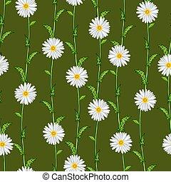 padrão, seamless, chamomiles, campo