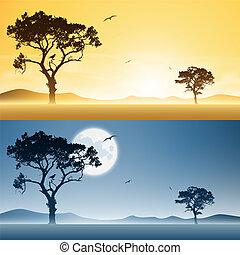 paesaggi, giorno, notte