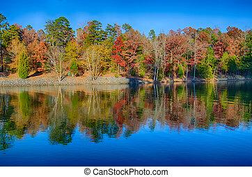 paesaggio., autumn., parco, luminoso, autunno, colori