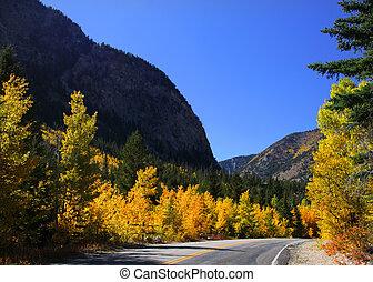paesaggio autunno, e, strada