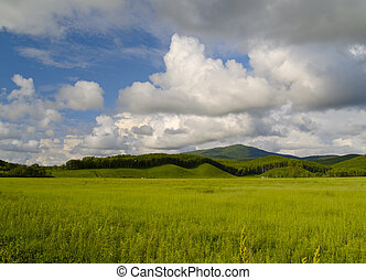 paesaggio, cielo, prato, nuvoloso, anno