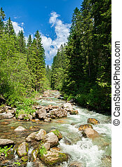 paesaggio, con, acqua fluente, montagne
