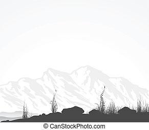 paesaggio, con, montagne