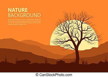 paesaggio, con, vecchio albero, sopra, sun.
