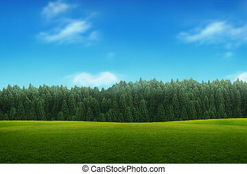 paesaggio, di, giovane, foresta verde, con, cielo blu