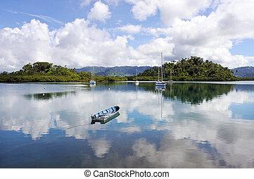 paesaggio, di, nakama, insenatura, in, savusavu, in, vanua, levu, isola, fiji.