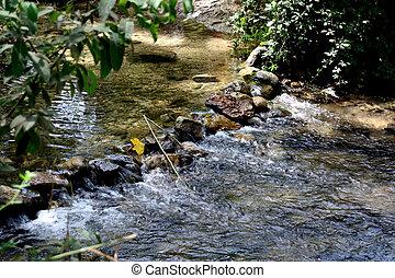 paesaggio, di, uno, fiume