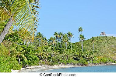 paesaggio, di, uno, remoto, spiaggia tropicale, in, figi
