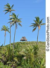 paesaggio, di, uno, remoto, spiaggia tropicale, in, il, yasawa, isole, figi