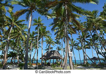 paesaggio, di, uno, ricorso, su, spiaggia tropicale, in, figi
