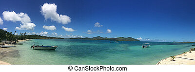 paesaggio, di, uno, spiaggia tropicale, ricorso, in, figi