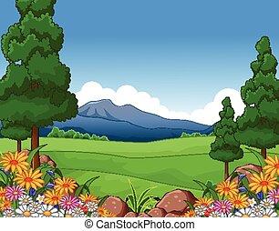 paesaggio, estate, bello