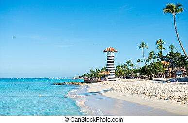 paesaggio., faro, caraibico, chiaro, sabbia, albero, tropicale, riva, palma, sabbioso, paradiso, bianco, mare
