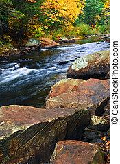 paesaggio fiume, cadere