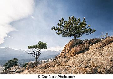 paesaggio, in, montagne rocciose parco nazionale