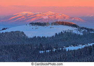 paesaggio, inverno, alba