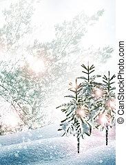 paesaggio., inverno