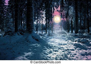 paesaggio inverno, con, neve coprì, alberi abete, e, pieno, moon.