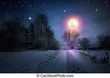 paesaggio inverno, con, neve coprì alberi, e, pieno, moon.