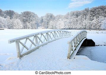paesaggio inverno, in, il, paesi bassi
