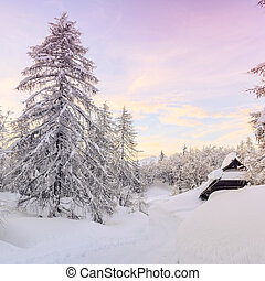 paesaggio inverno, in, montagne, julian, alpi
